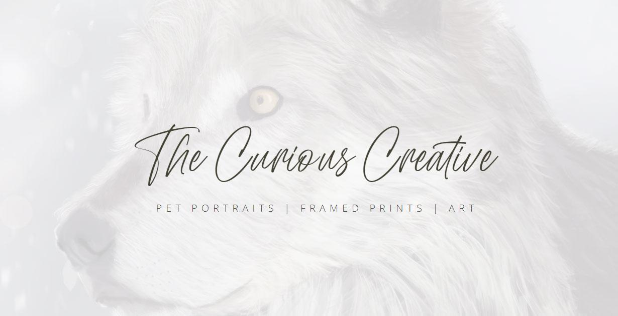 The Curious Creative