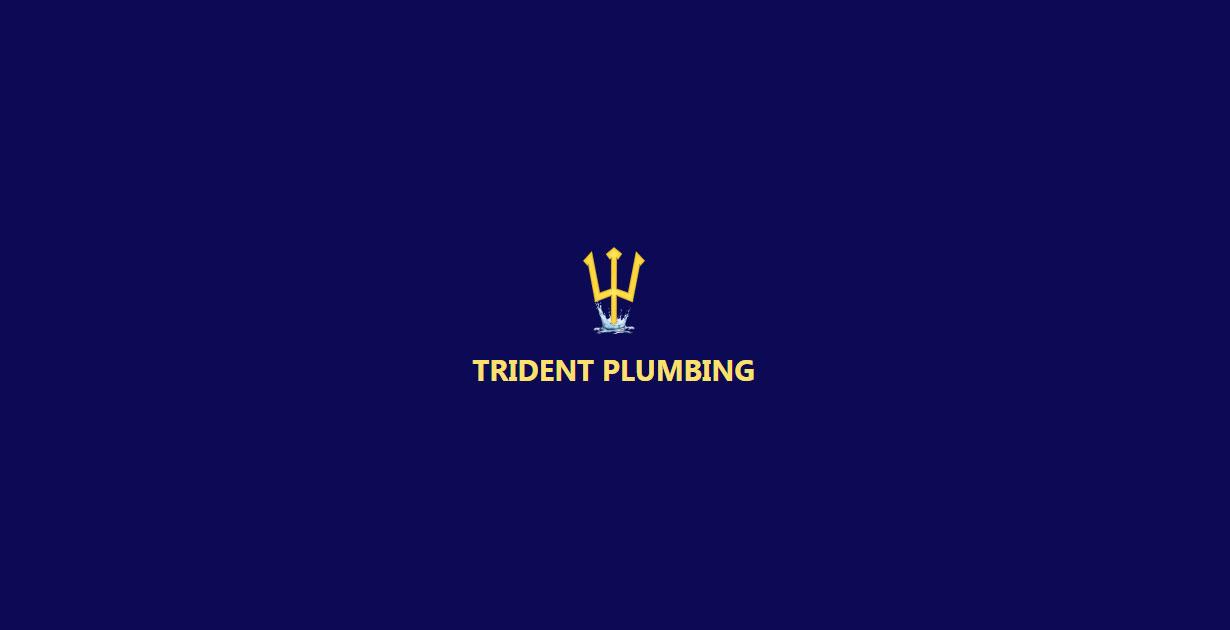 Trident Plumbing, LLC